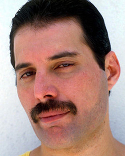 Fake Freddie Mercury Moustache